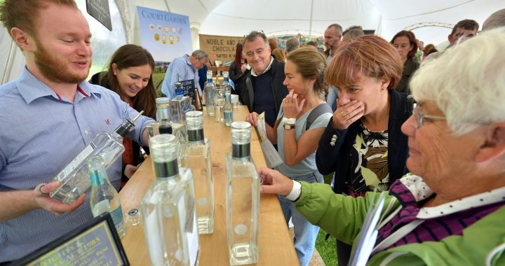 Visiting Sussex Gin & Fizz Festival Lewes