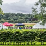 Vineyards of Hampshire Festival