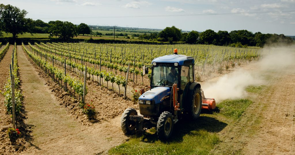 A tractor at Gusbourne