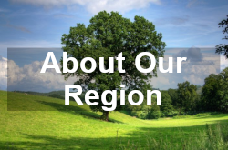 About Our Region