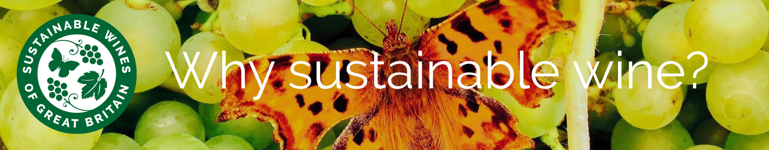 Why Sustainable?